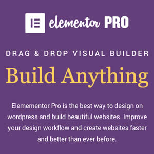 Elementor Pro Best Visual Page Builder