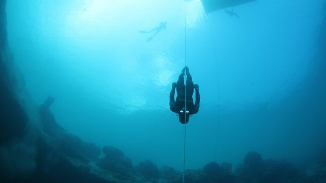 Superhuman Freediving CNF